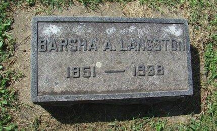 LANGSTON, BARSHA ANNA - Howell County, Missouri | BARSHA ANNA LANGSTON - Missouri Gravestone Photos