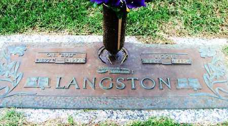 "LANGSTON, ELIZABETH ""LIZZIE"" - Howell County, Missouri 
