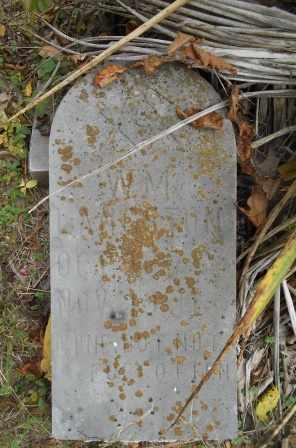 LANGSTON, WILLIAM - Howell County, Missouri | WILLIAM LANGSTON - Missouri Gravestone Photos