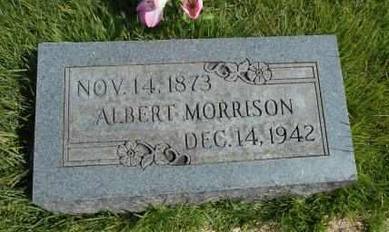 MORRISON, ALBERT - Howell County, Missouri | ALBERT MORRISON - Missouri Gravestone Photos