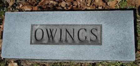 OWINGS, FAMILY PLOT - Howell County, Missouri | FAMILY PLOT OWINGS - Missouri Gravestone Photos