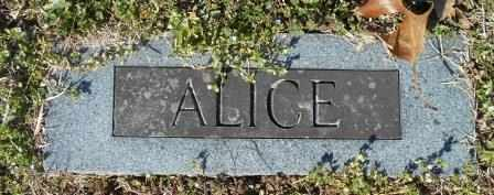 OWINGS, SARAH ALICE - Howell County, Missouri | SARAH ALICE OWINGS - Missouri Gravestone Photos