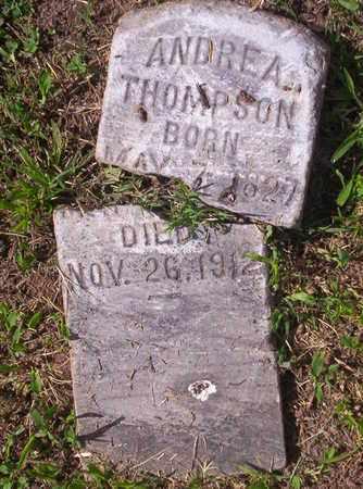 THOMPSON, ANDREA - Howell County, Missouri   ANDREA THOMPSON - Missouri Gravestone Photos