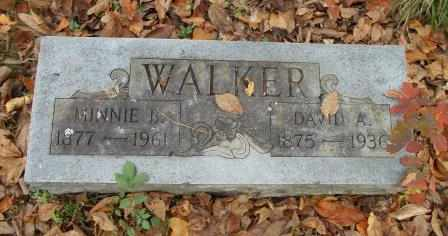 WALKER, DAVID ANDERSON - Howell County, Missouri | DAVID ANDERSON WALKER - Missouri Gravestone Photos