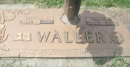 WALKER, WALTER H. - Howell County, Missouri | WALTER H. WALKER - Missouri Gravestone Photos