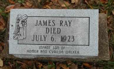 WALKER, JAMES RAY - Howell County, Missouri | JAMES RAY WALKER - Missouri Gravestone Photos