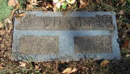 WILSON, BESSIE - Howell County, Missouri | BESSIE WILSON - Missouri Gravestone Photos