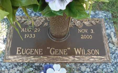 WILSON, EUGENE - Howell County, Missouri | EUGENE WILSON - Missouri Gravestone Photos