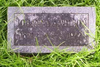 WILSON, JOHANNA A - Howell County, Missouri | JOHANNA A WILSON - Missouri Gravestone Photos