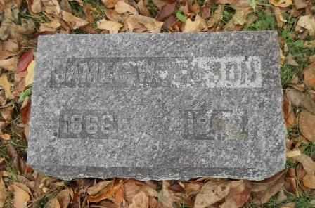 WILSON, JAMES W. - Howell County, Missouri | JAMES W. WILSON - Missouri Gravestone Photos