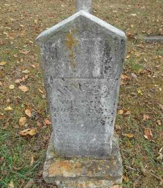 WILSON, JAMES SAMUEL - Howell County, Missouri | JAMES SAMUEL WILSON - Missouri Gravestone Photos