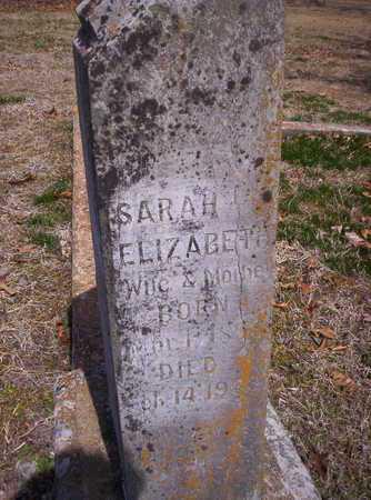 AX KINSOLVING, SARAH ELIZABETH - Howell County, Missouri | SARAH ELIZABETH AX KINSOLVING - Missouri Gravestone Photos