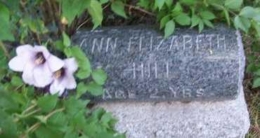 HILL, ANN ELIZABETH - Jackson County, Missouri | ANN ELIZABETH HILL - Missouri Gravestone Photos