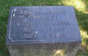 GOSSETT HILL, ANN ELIZABETH - Jackson County, Missouri | ANN ELIZABETH GOSSETT HILL - Missouri Gravestone Photos