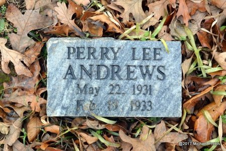 ANDREWS, PERRY LEE - Jasper County, Missouri | PERRY LEE ANDREWS - Missouri Gravestone Photos