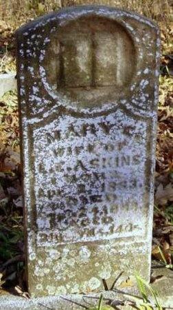ASKINS, MARY E - Jasper County, Missouri | MARY E ASKINS - Missouri Gravestone Photos