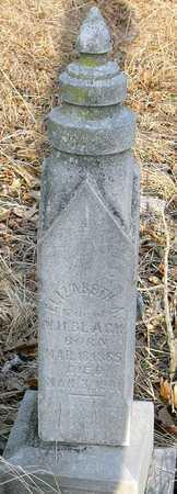 BLACK, ELIZABETH A - Jasper County, Missouri | ELIZABETH A BLACK - Missouri Gravestone Photos