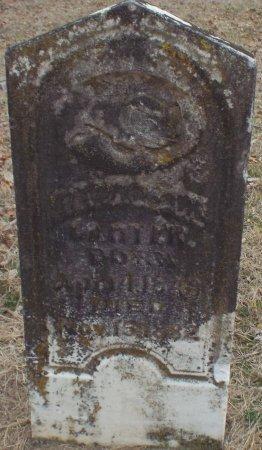 CARTER, GEORGE MARION - Jasper County, Missouri | GEORGE MARION CARTER - Missouri Gravestone Photos