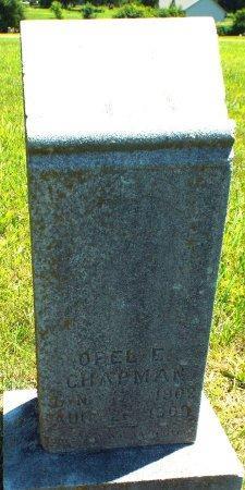 CHAPMAN, OPEL E - Jasper County, Missouri   OPEL E CHAPMAN - Missouri Gravestone Photos