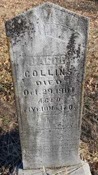 COLLINS, JACOB - Jasper County, Missouri | JACOB COLLINS - Missouri Gravestone Photos