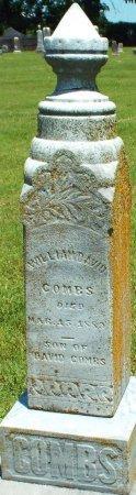 COMBS, WILLIAM DAVID - Jasper County, Missouri | WILLIAM DAVID COMBS - Missouri Gravestone Photos