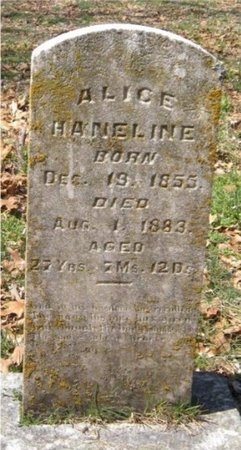 HANELINE, ALICE - Jasper County, Missouri   ALICE HANELINE - Missouri Gravestone Photos