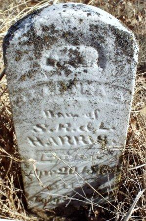 HARRIS, MARTHA A - Jasper County, Missouri | MARTHA A HARRIS - Missouri Gravestone Photos