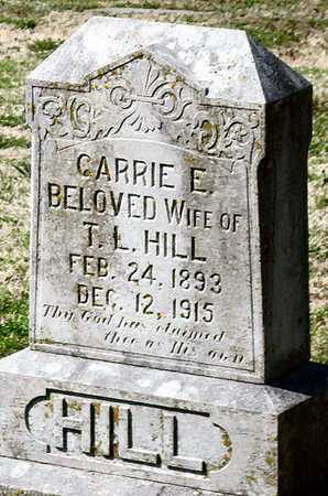 HILL, CARRIE E - Jasper County, Missouri | CARRIE E HILL - Missouri Gravestone Photos