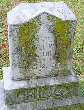 HILL, CARRIE E. - Jasper County, Missouri | CARRIE E. HILL - Missouri Gravestone Photos
