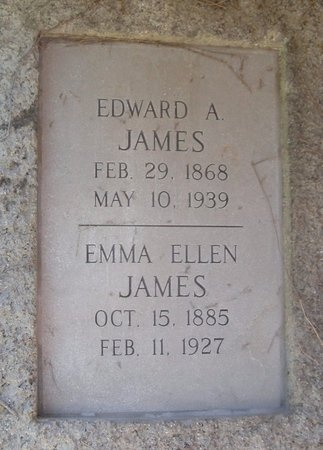 JAMES, EMILY ELLEN - Jasper County, Missouri | EMILY ELLEN JAMES - Missouri Gravestone Photos