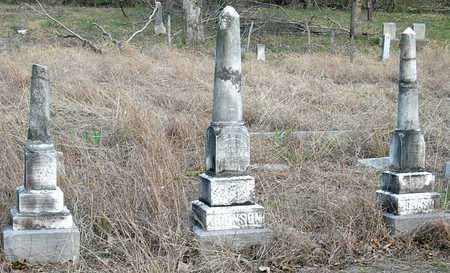 JOHNSON, FAMILY PLOT - Jasper County, Missouri | FAMILY PLOT JOHNSON - Missouri Gravestone Photos