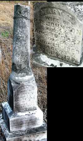 JOHNSON, MARY TSCHARNER - Jasper County, Missouri | MARY TSCHARNER JOHNSON - Missouri Gravestone Photos