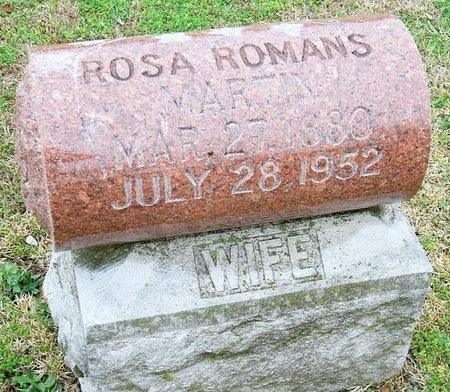 MARTIN, ROSA ALENA - Jasper County, Missouri | ROSA ALENA MARTIN - Missouri Gravestone Photos