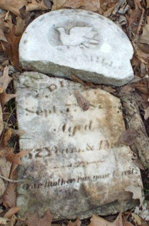 MILLS, FANNY - Jasper County, Missouri   FANNY MILLS - Missouri Gravestone Photos