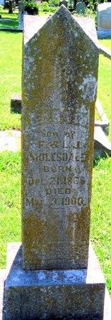 MOLESDALE, EZRA G - Jasper County, Missouri | EZRA G MOLESDALE - Missouri Gravestone Photos