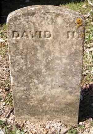 REED, DAVID NEAL - Jasper County, Missouri | DAVID NEAL REED - Missouri Gravestone Photos