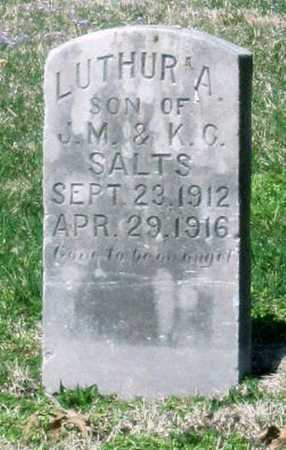 SALTS, LUTHER A - Jasper County, Missouri | LUTHER A SALTS - Missouri Gravestone Photos