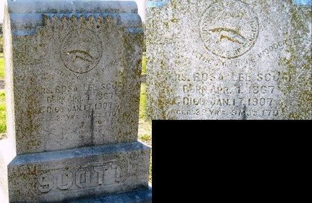 SCOTT, ROSA LEE - Jasper County, Missouri | ROSA LEE SCOTT - Missouri Gravestone Photos
