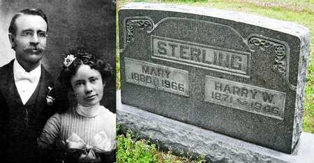 STERLING, HARRY WILLIAM - Jasper County, Missouri | HARRY WILLIAM STERLING - Missouri Gravestone Photos
