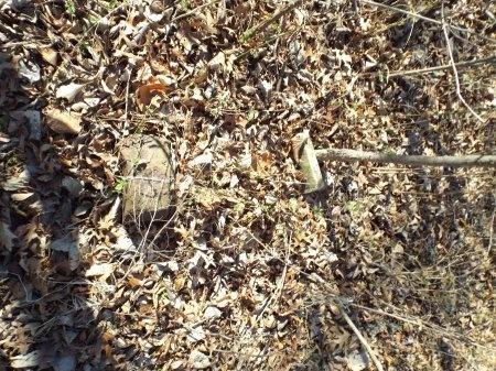 UNKNOWN, UNKNOWN - Jasper County, Missouri   UNKNOWN UNKNOWN - Missouri Gravestone Photos