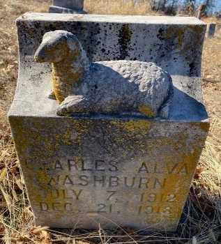 WASHBURN, CHARLES ALVA - Jasper County, Missouri   CHARLES ALVA WASHBURN - Missouri Gravestone Photos