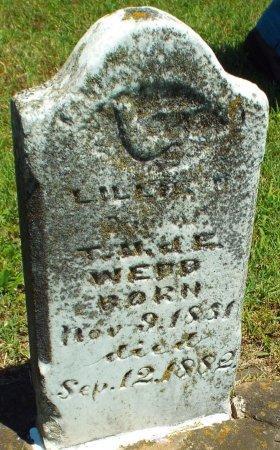 WEBB, LILLIE - Jasper County, Missouri | LILLIE WEBB - Missouri Gravestone Photos