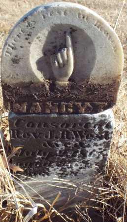 LANDERS WEST, NANCY JANE - Jasper County, Missouri | NANCY JANE LANDERS WEST - Missouri Gravestone Photos