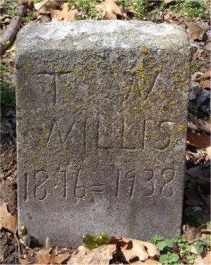 WILLIS, T W - Jasper County, Missouri | T W WILLIS - Missouri Gravestone Photos