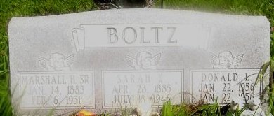 BOLTZ, DONALD L. - Knox County, Missouri | DONALD L. BOLTZ - Missouri Gravestone Photos