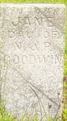 GOODWIN, JANE - Knox County, Missouri | JANE GOODWIN - Missouri Gravestone Photos