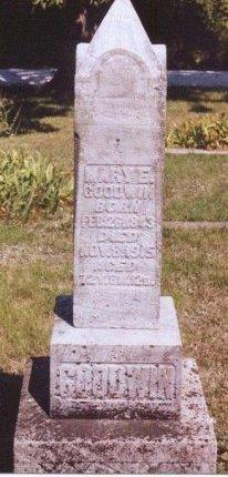 GOODWIN, MARY ELLEN - Knox County, Missouri | MARY ELLEN GOODWIN - Missouri Gravestone Photos