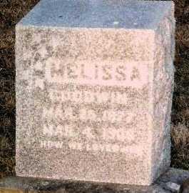 GOODWIN, MELISSA - Knox County, Missouri | MELISSA GOODWIN - Missouri Gravestone Photos
