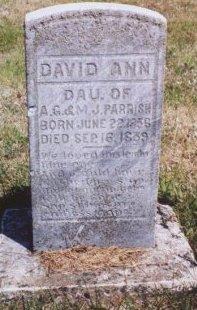 PARRISH, DAVID ANN - Knox County, Missouri   DAVID ANN PARRISH - Missouri Gravestone Photos
