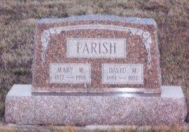 PARRISH, DAVID MOORE - Knox County, Missouri | DAVID MOORE PARRISH - Missouri Gravestone Photos